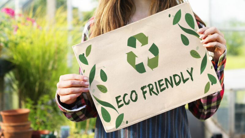 3 Eco-friendly ideas for a sustainable home