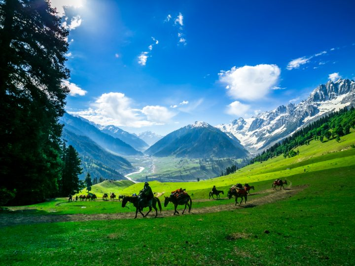 Things to do in Kashmir in December