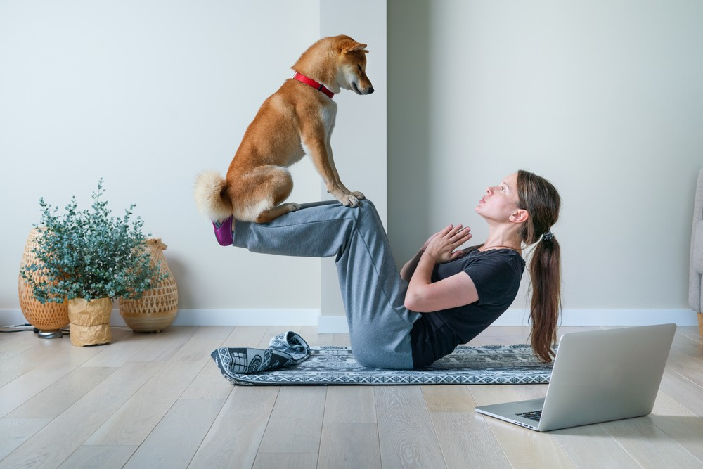 Make a great bond with your furry friends